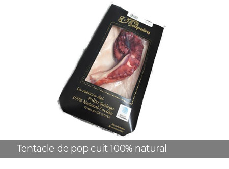 Rosa-vientos--Tentacle-de-pop-cuit-100%-natural